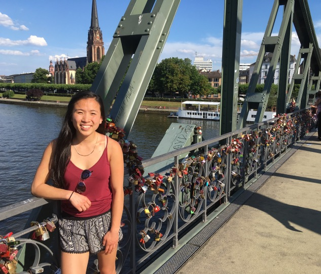 Eiserner Steg (The Rion Bridge)